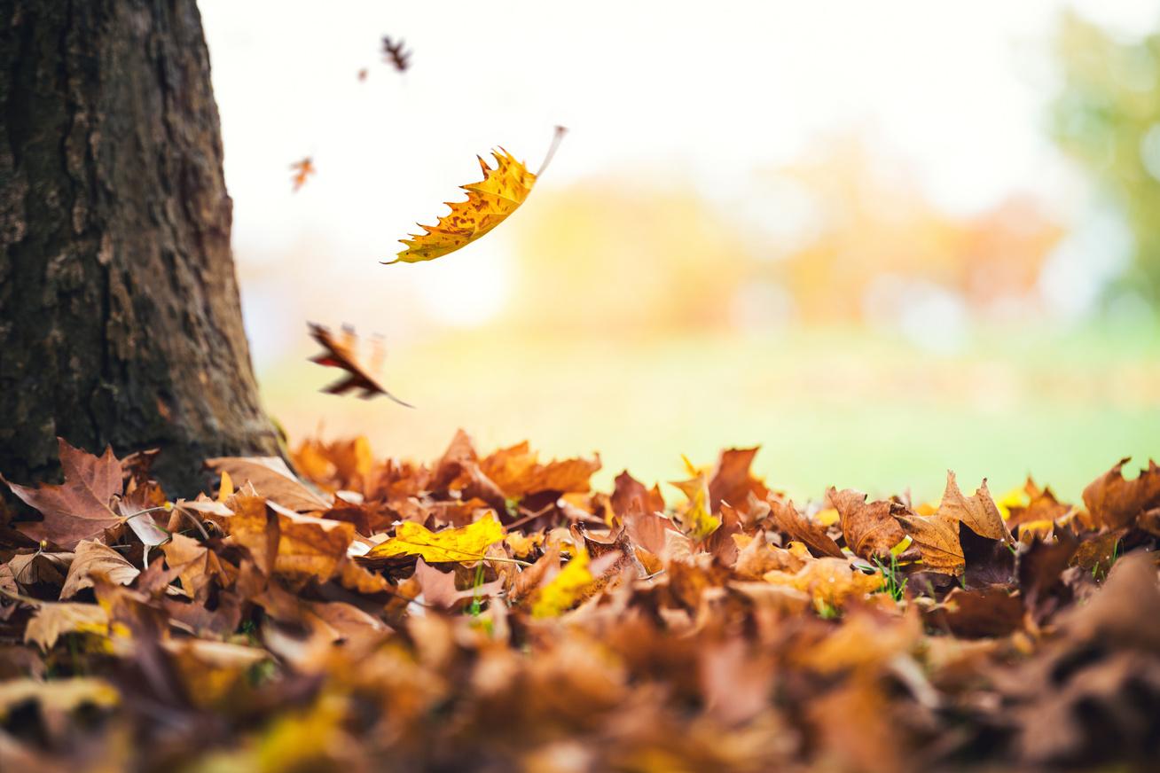 őszi-időjárás-kép1