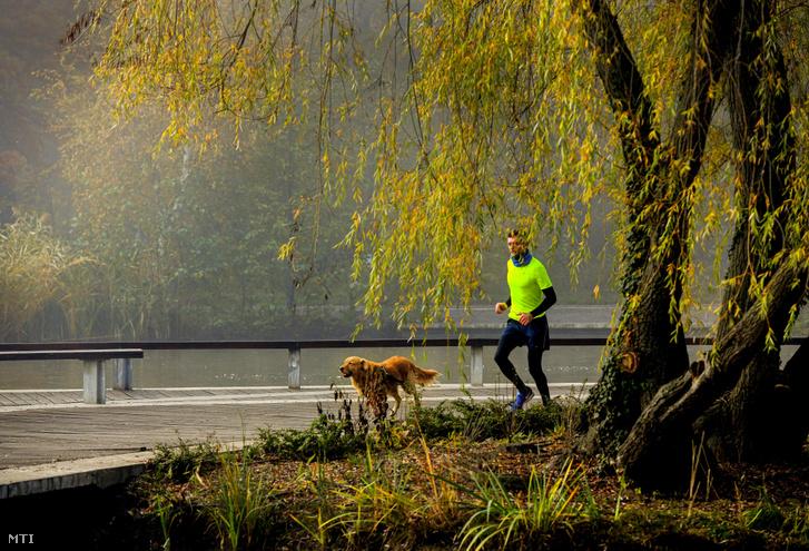 Egy férfi fut kutyájával Debrecenben a Békás-tó környékén november 11-én.