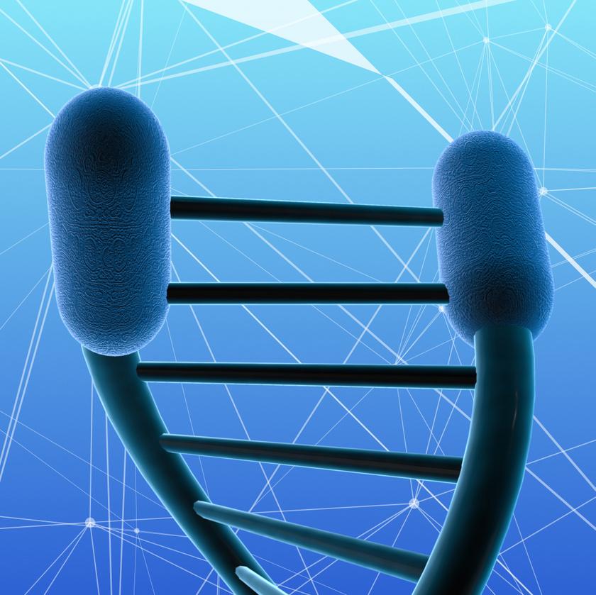 telomerek