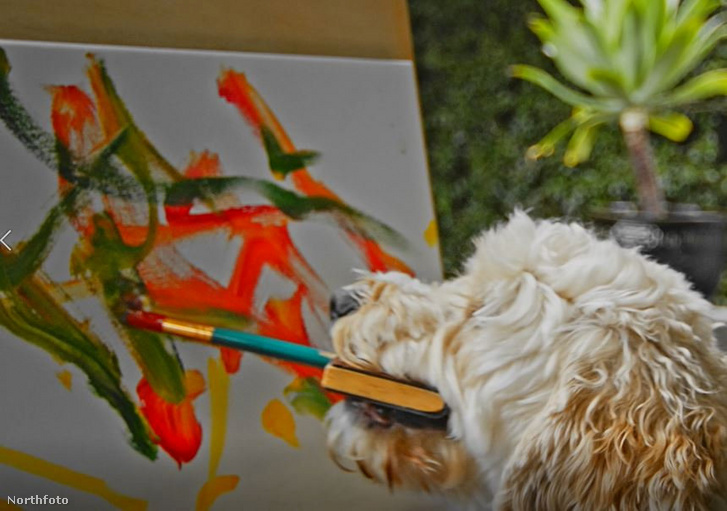 tk3s swns painting dog 04