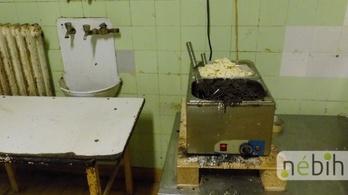 Horrorkörülmények miatt zártak be egy csongrádi sütőüzemet