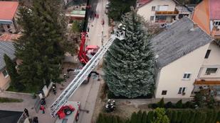 Videó: az ország karácsonyfájának minden méterére jutott egy tűzoltó