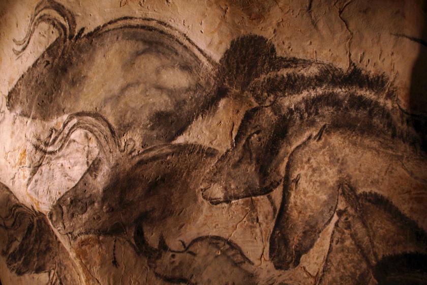 Lenyűgözőek a francia barlang 36 ezer éves rajzai: senki sem tudja, miért jöttek létre a nagyszerű alkotások