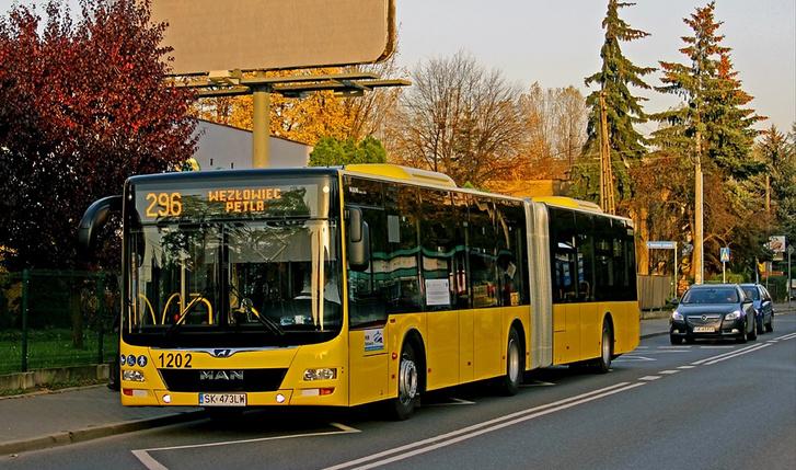 Az MAN Lion's City korábbi változatából érkeznek a Volánbusz új buszai (fotó: phototrans.eu)