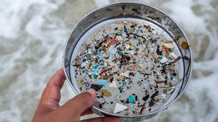 Már a déli-sarkvidék édesvizeiben is találtak mikroműanyagot