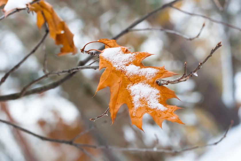 Hózáporokkal köszönt be a hétvége: nap közben is egyre hidegebb lesz
