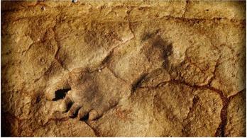 120 ezer éves emberi lábnyomokra bukkantak Szaúd-Arábiában