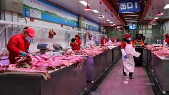 A WHO továbbra is ragaszkodik ahhoz, hogy a koronavírus Kínából terjedt szét