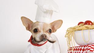 Nem mindegy, hogyan főzöd a tésztát – így lesz a legfinomabb!