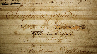 Miért lett dühös Beethoven Napóleonra?