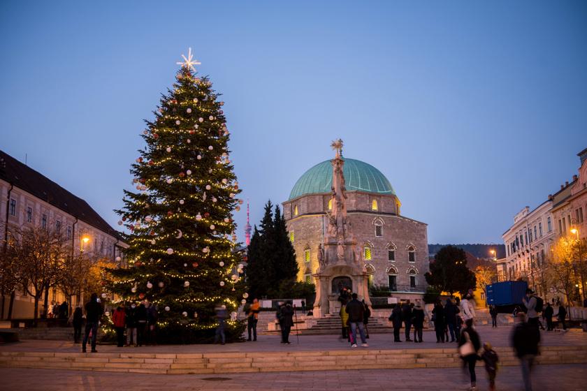 A kivilágított mindenki karácsonyfája a pécsi Széchenyi téren.