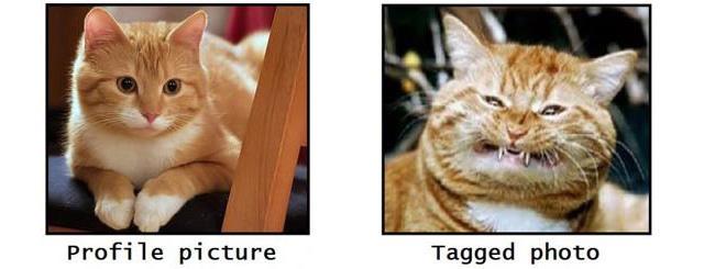 Illusztráció a profilkép és a többi kép, vagy adott esetben a valóság közötti különbségről - forrás: Facebook