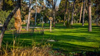 Botanikus kerttel és futókörrel bővült a Liget-projekt