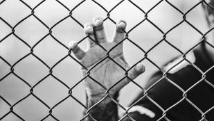 Huszonnyolc évig tartotta fogva a fiát egy svéd asszony