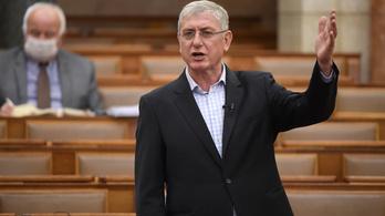 Gyurcsány Ferenc: Egy dolgunk maradt. Készülni