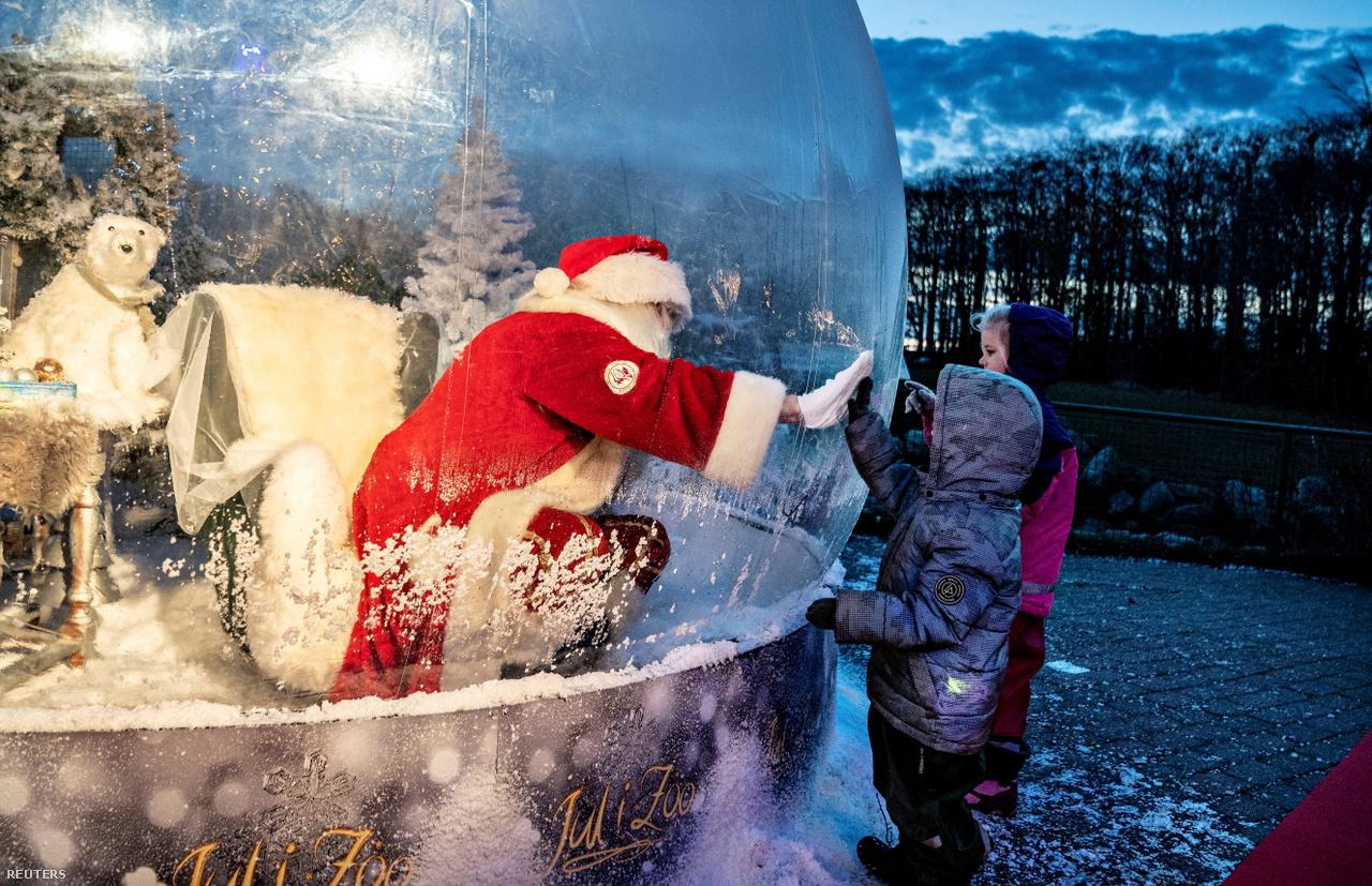 A dániai Aalborgi Állatkertben a Mikulás egy buborékban ülve érintkezik a rá kíváncsi gyerekekkel.