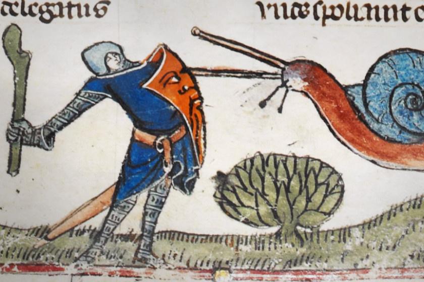 Mivel a művészettörténészek véleménye megoszlik, mit képviselhetett a csiga, több magyarázat is létezik. Az egyik, hogy a lovag erejét volt hivatott kiemelni. A másik, hogy a csiga egyfajta halálszimbólum lehetett. A harmadik pedig, hogy a csigák a Lombardiaiak jelképeként kerültek a rajzokra.