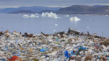 Belaktuk a bolygót az élőlények kárára