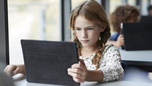 Online tanulás és kapcsolattartás: mumusból jó baráttá vált a képernyő