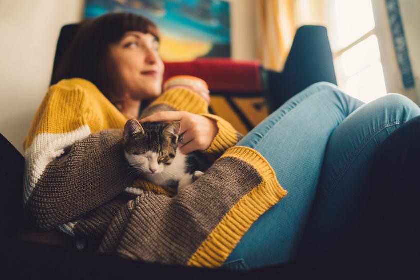 macska olben 3