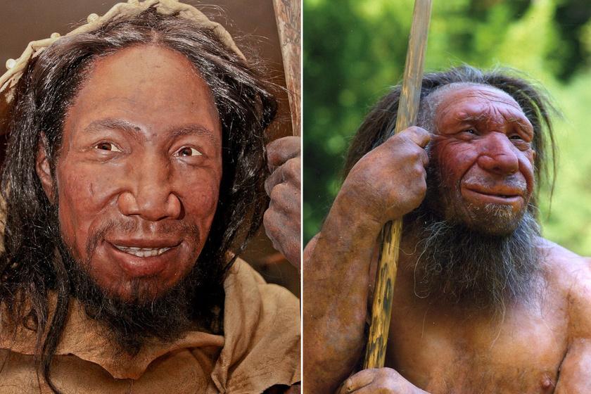Neander-völgyiek élethű rekonstrukciói.