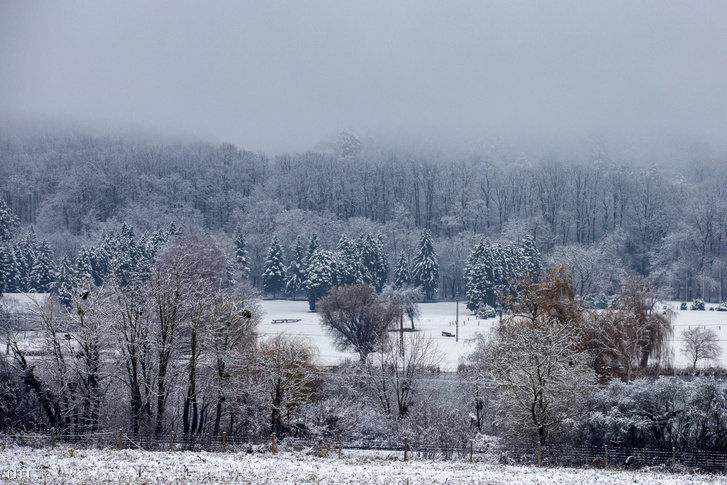 Havas táj a nagykanizsai Csónakázó-tónál 2020. december 10-én.