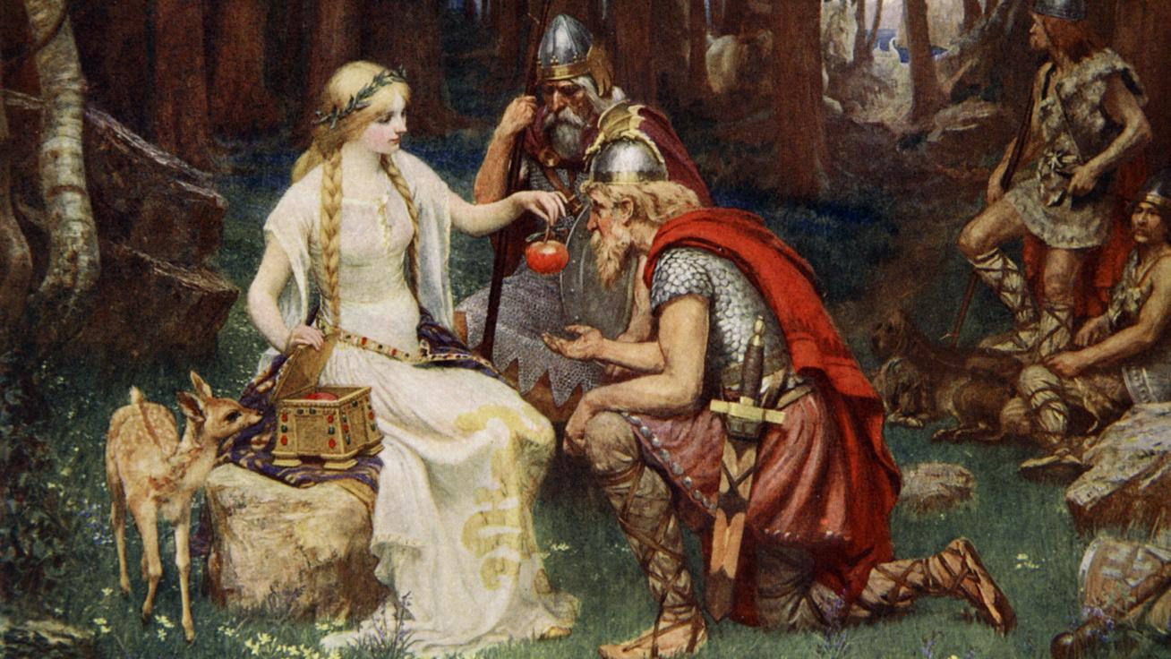 vikingek cover