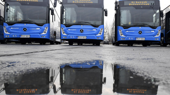 Buszbérlési pályázat: visszalépett a panaszos, megszüntették az eljárást a BKV ellen