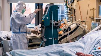 Horvátországban és Szlovéniában is nőtt a kórházban ápoltak száma