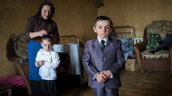 Grúz nomádok végveszélyben