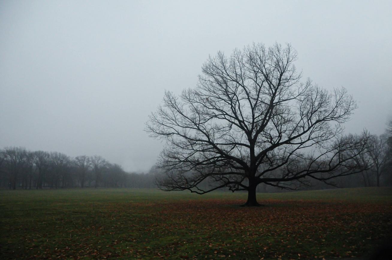 időjárás-december