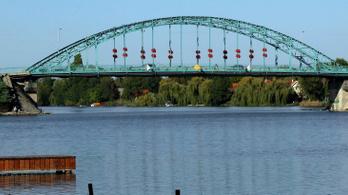 Súlyos olajszennyezés puszította el a védett úszólápot a Ráckevei Duna-ágon