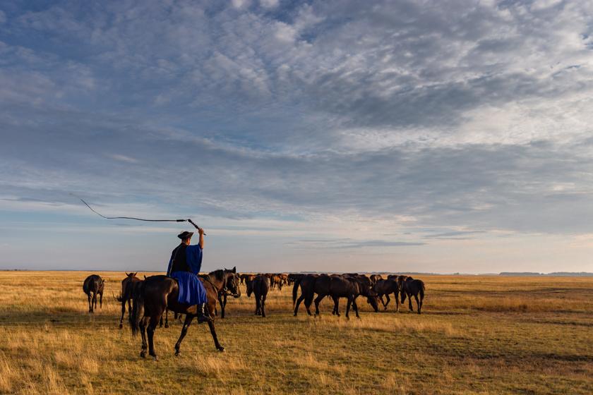 Mint nagyon sokan, korábban ő sem tudta, hogy a Hortobágyon nemcsak régen éltek pásztorok és csikósok, hanem kevesen még ma is őrzik ezt a hagyományt. Ahogy a fotózás során jobban megismerte őket, Zsolt elmondta, hogy bár kevesebben vannak, ugyanúgy dolgoznak, mint az őseik.