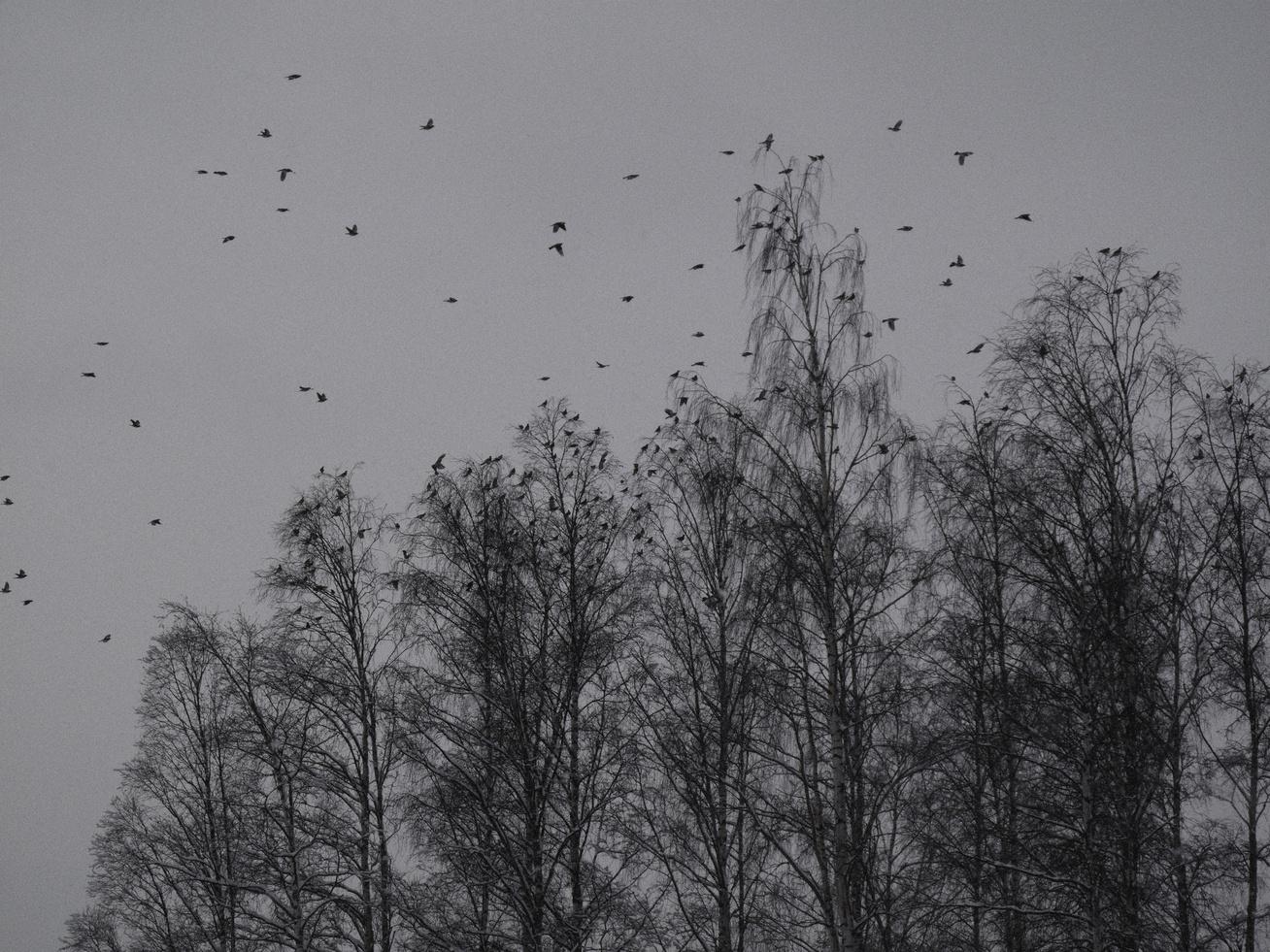 decemberi-időjárás2