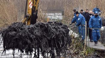 Elszállítják a szennyezett iszapot Szigetszentmiklósról