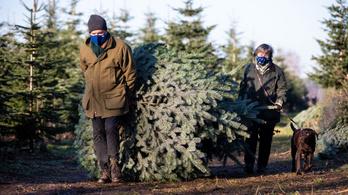 A többség a rezsitámogatásnak örülne karácsonyra