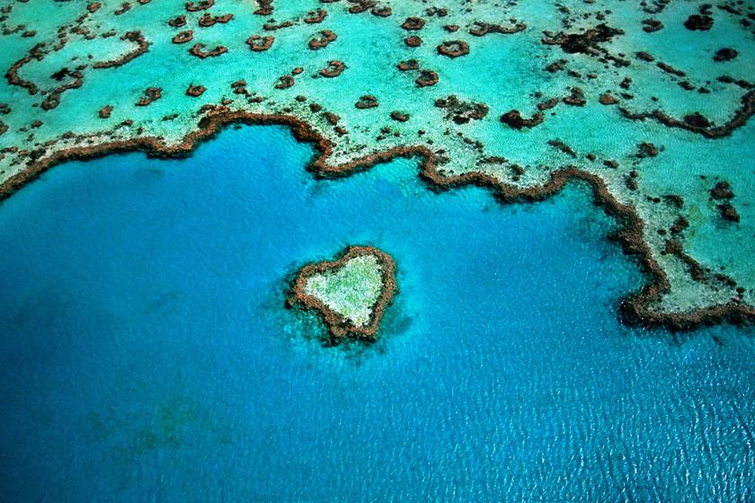 A világ legnagyobb korallzátonya, a Nagy-korallzátony már önmagában is elképesztően látványos a gazdag élővilágának köszönhetően, de madártávlatból nézve is tud meglepetéseket okozni - remek példa erre a szív formájú korall.
