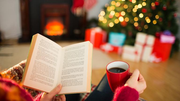 Mit olvasnak a politikusok a fa alatt?