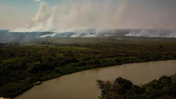 Szénelnyelőből szénkibocsátóvá válnak a brazil erdők
