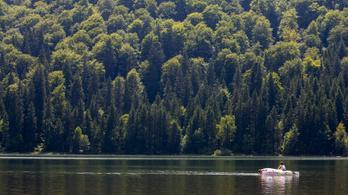 A Szent Anna-tóban vége lesz az ezüstkárászok boldogságának