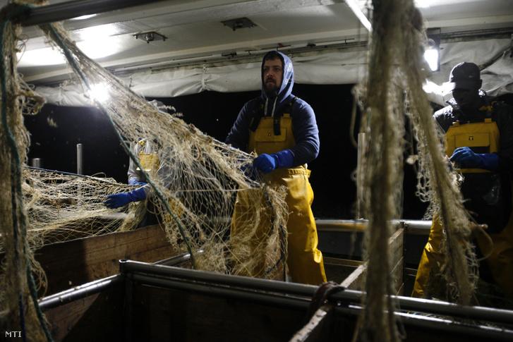 Nicolas Bishop halász a Jeremy Florent II halászhajón dolgozik az észak-franciaországi Boulogne-sur-Mer kikötőjében. Az Európai Unió és az EU-ból kilépő Nagy-Britannia között egyelőre jelentősek a nézetkülönbségek kétoldalú kapcsolatrendszer jövőjét illető három kulcsfontosságú területen, amelyek egyike a halászat szabályozása.