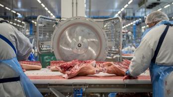 Jó hírt kapott a magyar húsipar