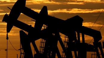 Idén nem nő a biorészarány a hazai üzemanyagokban