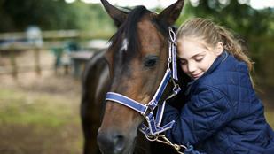 Tudod, hogy a kislányok miért imádják annyira a lovakat? Tudományos magyarázat is van rá