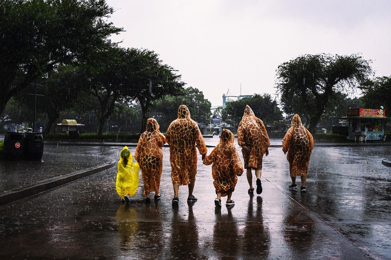 Leofoo állatkert, 2020. június 12-én.