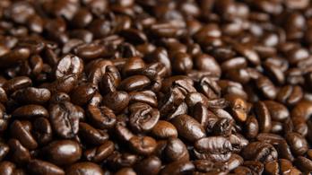 A kávé az egyik leginkább környezetszennyező élelmiszer