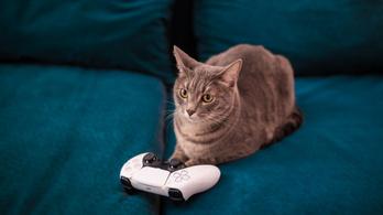PS5 DualSense extrák kerülhetnek az új Xbox-kontrollerbe?