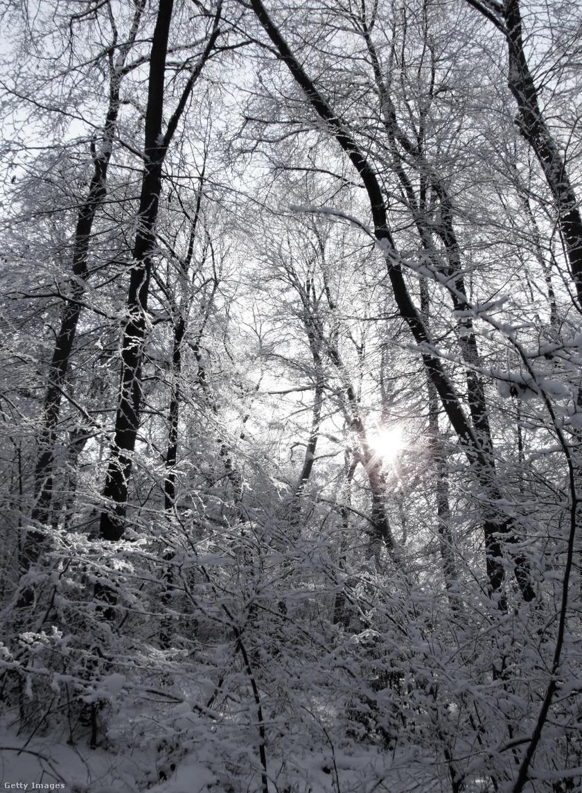 havazás1