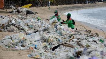 Elöntötte a műanyag Balit