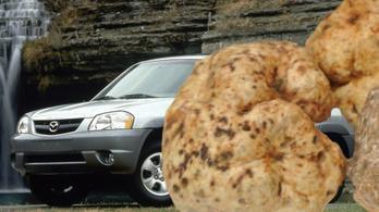 Tibi bácsi meséi 7: egy rossz Mazda, szarvasgombával